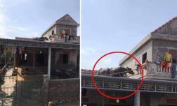 Lũ về khiến đàn trâu bơi lên mái nhà, giờ nước nút, chủ nhà không biết cách nào đưa chúng xuống?