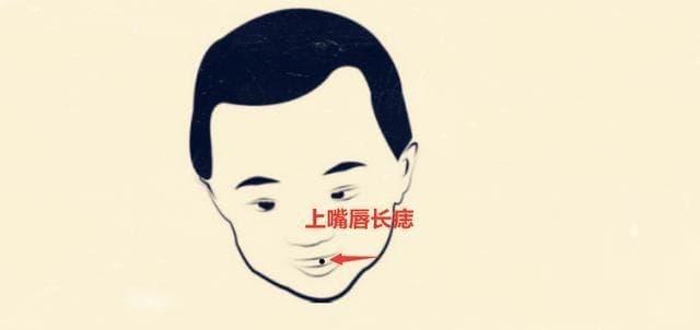 4-vi-tri-not-ruoi-giau-sang-ngoisaovn-w640-h302 1