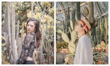 Sau một năm đường ai nấy đi, Trịnh Thăng Bình và Liz Kim Cương bị soi bằng chứng tái hợp