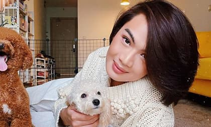 Đào Bá Lộc: 'Dạo này tôi sợ mất người yêu và đã nghĩ đến chuyện kết hôn'