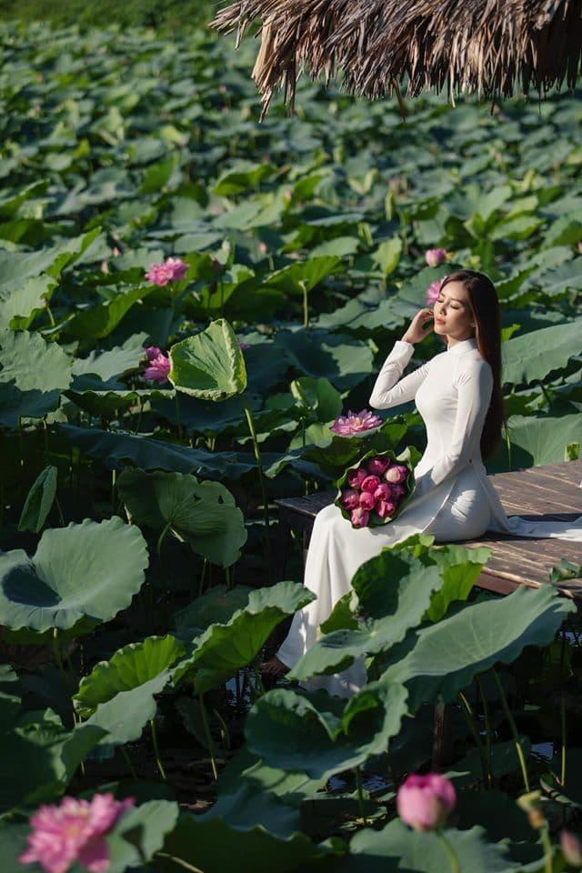 Nguyễn Loan 2