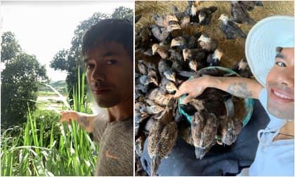 Ya Suy bị nhiều người cười khinh khi là ca sĩ nổi tiếng lại về quê nuôi gà, chăn heo