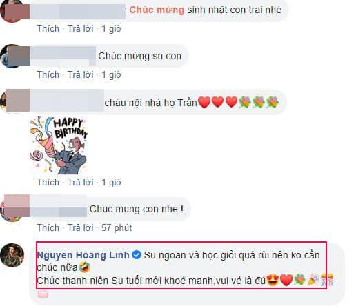 con riêng Nguyễn Hoàng Linh 2