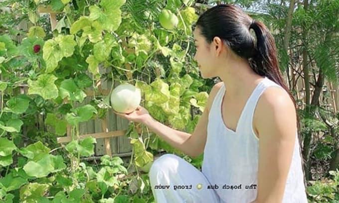 Phạm Hương lộ body tăng cân thấy rõ, dung mạo lại xinh đẹp bội phần