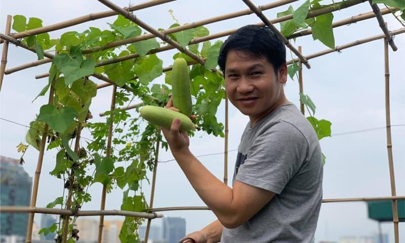 Khu vườn nhỏ xanh mướt, sai trĩu quả trên sân thượng của 'Ông hoàng nhạc đỏ' Trọng Tấn