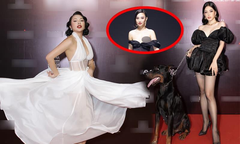 Á hậu Phương Nga dắt chó triệu đô đi dự sự kiện thời trang vẫn không bằng cô người mẫu 'tự tin'... lộ hàng