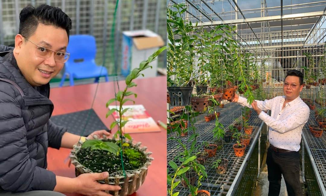 Khám phá vườn lan đột biến trị giá hàng tỷ đồng của anh Phạm Thành Luật