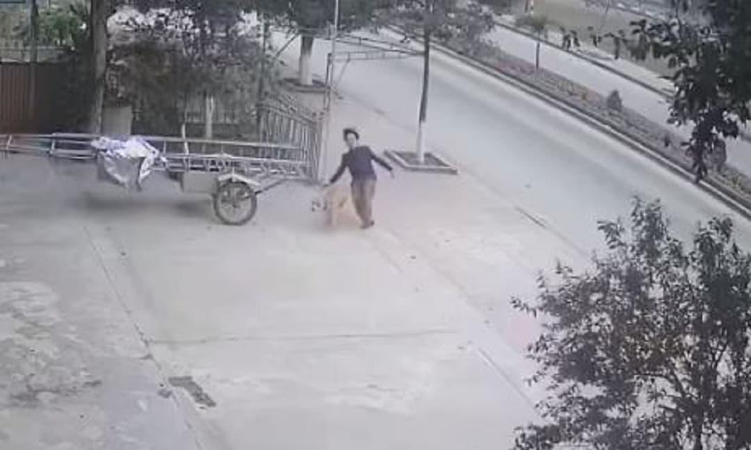 Tông trúng khiến người đàn ông bị ngã mạnh 1 vố, chú chó có hành động khiến dân tình nguôi giận