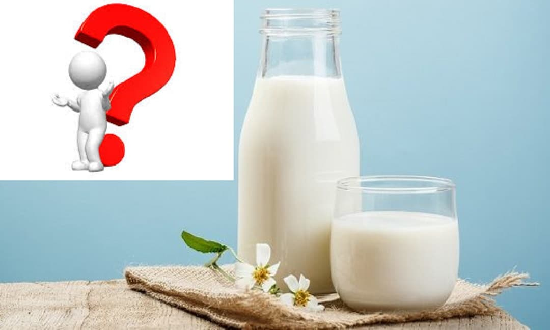 Uống sữa bò buổi sáng hay buổi tối, cái nào lợi hơn? Chuyên gia dinh dưỡng cho bạn biết câu trả lời