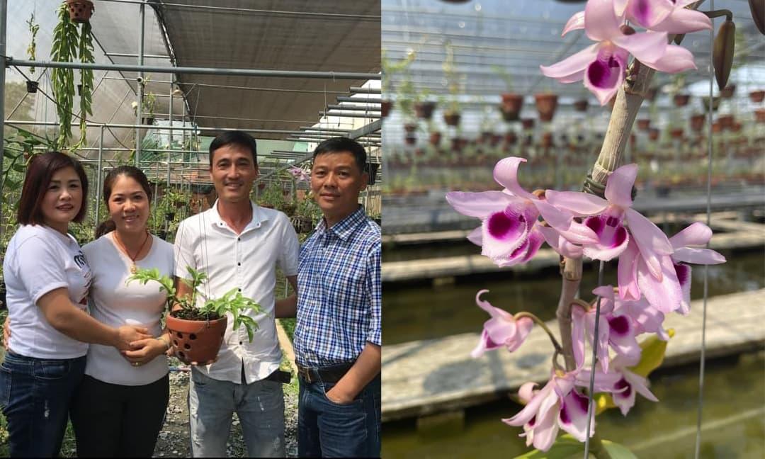 Nghệ nhân Nguyễn Hồ Phúc Vinh chia sẻ bí quyết thành công với việc kinh doanh hoa lan