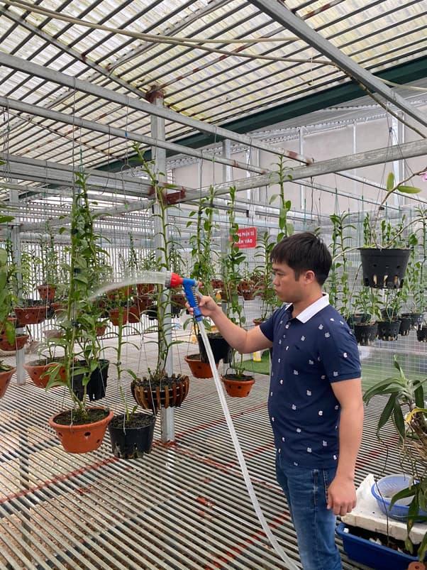 Lan đột biến, nghệ nhân trồng lan, Bùi Văn Dũng