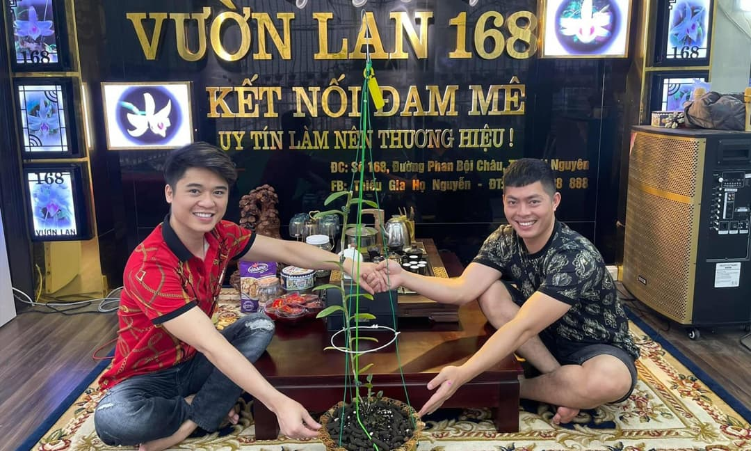Thiếu gia họ Nguyễn: 3 nguyên tắc chăm lan hiệu quả cho người mới bắt đầu
