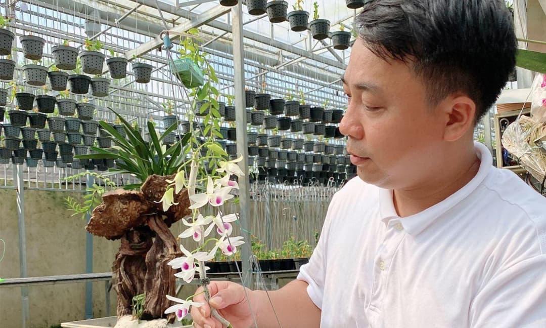Nghệ nhân Nguyễn Thành Chuyên, hoa lan, trồng lan