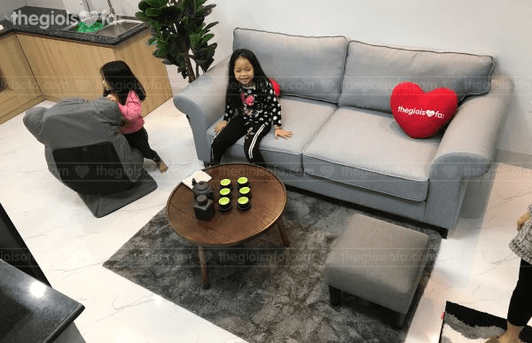 Dịch vụ vệ sinh ghế sofa, thế giới sofa, sofa nhập khẩu