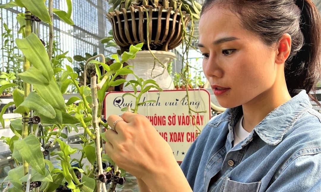 Phạm Hải Yến, chăm sóc lan, trồng lan