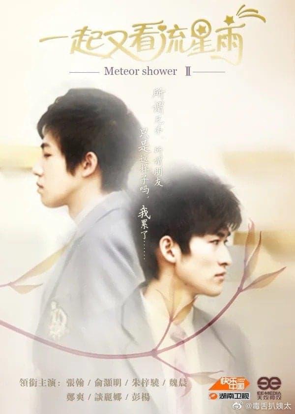 Triệu Vy và Trịnh Sảng bị xóa ảnh, hàng loạt poster phim kinh điển biến thành 'đam mỹ trá hình' 10