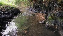 Vụ nước sông Đà nhiễm bẩn: UBND tỉnh Hòa Bình họp báo công bố thông tin
