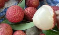 Mẹo ăn vải thiều không sợ nóng và 3 cấm kị khi ăn vải thiều để tránh 'rước họa' vào thân