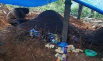 Xót xa cảnh nữ sinh Trà Leng gục khóc bên mộ của cha mẹ sau vụ sạt lở kinh hoàng