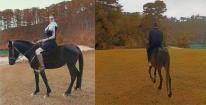 Đi cưỡi ngựa, chồng đại gia của Huyền Baby lại chiếm spotlight khiến vợ liên tưởng đến cả Lee Min Ho