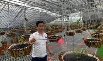 Bí quyết thành công của ông chủ vườn lan Tuan Linh