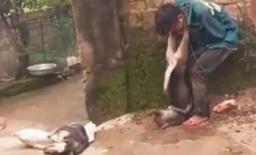 Người đàn ông trộm chó bị dân làng quây đánh tử vong