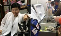 Nữ triệu phú Thái Lan chết thảm, thi thể bị giấu trong tủ lạnh đổ đầy bê tông