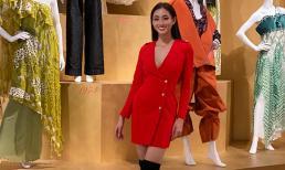 Tin vui tới tấp, Hoa hậu Lương Thùy Linh tiếp tục lọt Top 10 phần thi Top Model