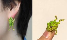 Bông tai ếch kì dị đang làm giới trẻ mê mẩn