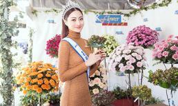 Lương Thuỳ Linh lần đầu tiết lộ cát-xê dự event