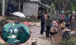 Thảm án 5 người chết ở Thái Nguyên: Nạn nhân duy nhất sống sót giờ ra sao?