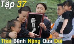 Trọng Nhân tiết lộ Thái sẽ qua đời ở kết phim 'Hoa hồng trên ngực trái'?