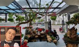 Khu vườn nhỏ xinh bên trong biệt thự tiền tỷ của ca sĩ Tuấn Hưng