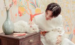 Vũ Cát Tường tặng fan bộ ảnh Tết cực đáng yêu, lần đầu tiên cho mèo cưng lên sóng
