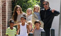 Brad Pitt không chịu nổi phải ly hôn vì Angelina Jolie tiếp tục nhận nuôi người con thứ 7?