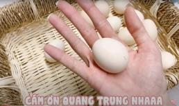 Hướng dẫn luộc trứng gà bằng nước, Hari Won lại hack não fan bằng khả năng nói tiếng Việt