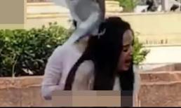 Bật cười trước khoảnh khắc 'Tiểu Long Nữ' Lý Nhược Đồng bị chim bồ câu tấn công