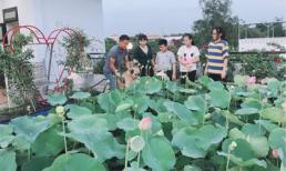 Vợ chồng ở Sài Gòn biến sân thượng thành đầm sen thơm ngát và vườn rau sạch đủ cung cấp cho cả đại gia đình