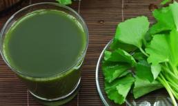 Nước rau má: Cực tốt và cực độc, uống sai cách có thể khiến bạn mất mạng