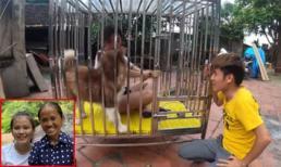 Con trai bà Tân Vlog gây tranh cãi khi dụ nhốt em gái nuôi vào chuồng chó