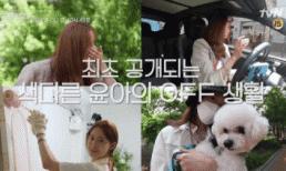 Yoona (SNSD) bị soi lái xe Porsche hàng tỷ đồng, dân mạng nhắc lại chuyện người đẹp này từng đi cọ bồn cầu, thông toilet