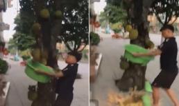 Pha hứng mít chín cây bằng chậu nhựa của người đàn ông khiến dân mạng không nhịn được cười