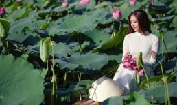 Hoa hậu Biển Nguyễn Thị Loan duyên dáng khi diện áo dài chụp ảnh ở hồ sen