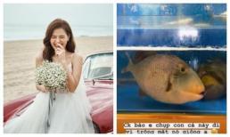 Hiếm lắm mới chịu đăng ảnh 'chồng', Phanh Lee lại 'dìm' thế này!