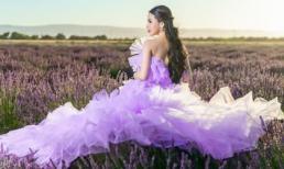Hoa hậu người Việt tại Mỹ - Hạ My khiến fans thổn thức khi đắm mình giữa cánh đồng hoa Lavender