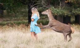 Nữ ca sĩ bị hươu tấn công khi đang quay video quảng cáo ở công viên và bị thương bầm tím lưng