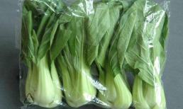 Sau mùa đông, đừng mua 3 loại rau này, nếu không người già và trẻ em sẽ khổ