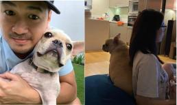 Chúc mừng sinh nhật cún cưng, Phillip Nguyễn đăng luôn ảnh chụp lén Linh Rin