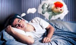Giải mã 4 giấc mơ về cá dự báo vận may ghé thăm, chuẩn bị tinh thần đón tin vui liên tiếp