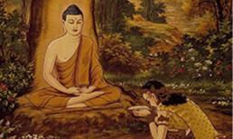 Câu nói 'Nam Mô A Di Đà' của Phật tử có nghĩa là gì? Sau khi đọc nhiều người mới biết mình đang nói gì?